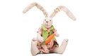 Easter bunny with carrot on  white Royalty Free Stock Photos