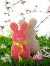 Easter bunny cookie Royalty Free Stock Images