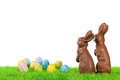 Easter bunny couple with eggs of chocolate bunnies colorful on a meadow Stock Photography