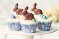 Easter bunny cupcakes decorated with chocolate bunnies Royalty Free Stock Photography