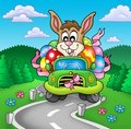 Easter bunny driving car on road Royalty Free Stock Image