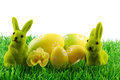 Easter bunny easter eggs green grass Stock Photo