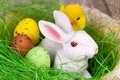 Easter bunny and eggs basket with Royalty Free Stock Images