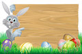 Easter bunny and eggs basket sign white rabbit pointing at a with chocolate Royalty Free Stock Photo