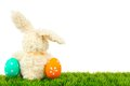 Easter bunny and eggs border toy on grass with colorful forming a corner Stock Image