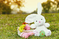 Easter bunny and eggs a close up with in basket on the meadow Stock Photo