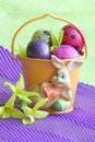 Easter bunny eggs and flower stock photos holiday card with yellow forsythia flowers on purple background Royalty Free Stock Photos