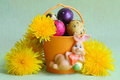 Easter bunny eggs and flowers stock photos holiday card with yellow dandelions on green background Stock Photo