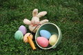 Easter bunny with eggs on green grass stuffed posing colorful Stock Photos