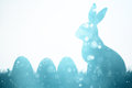Easter bunny and eggs on meadow Royalty Free Stock Photo