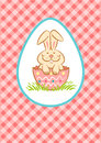 Easter bunny illustration of in the egg shell Stock Images