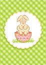 Easter bunny illustration of in the egg shell Royalty Free Stock Image