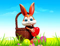 Easter bunny pick up eggs from ground Royalty Free Stock Image