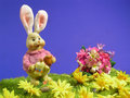 Easter bunny rabbit Stock Photos