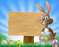 Easter bunny rabbit background Stock Images