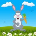 Easter bunny rabbit in a meadow cute holding carrot with green grass and flowers eps file available Royalty Free Stock Photo