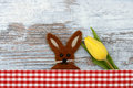 Easter bunny and yellow tulip Stock Photos