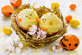 Easter candy chick in nest festive sweet treat for children selective focus Royalty Free Stock Photos