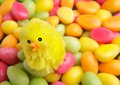 Easter candy with chicken a decorate pile of in the shape of eggs in several colors Royalty Free Stock Photo