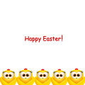 Easter card with little chickens on a white background Stock Photography