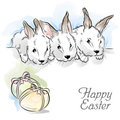 Easter card with three rabbits and two eggs Stock Photography