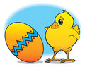 Easter chick baby chicken marvels at decorated egg Royalty Free Stock Image