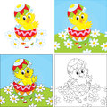 Easter chick little yellow looking out of a colorful egg Stock Images