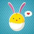 Easter chicken in egg shell