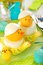 Easter chickens made from boiled eggs Stock Photo