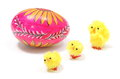 Easter chickens with painted egg closeup of yellow and colorful chicken or the decoration on white background Stock Photos