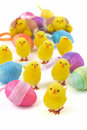Easter chicks with eggs Royalty Free Stock Images