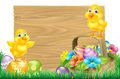 Easter chicks and eggs basket sign isolated wooden cartoon with baby chicken birds spring flowers in a field Stock Images