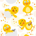 Easter chicks seamless pattern a with cute in different positions and expressions on white background useful also as design Royalty Free Stock Images
