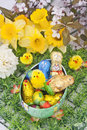 Easter chocolates on grass with narcissus Royalty Free Stock Photography