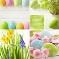 Easter collage eggs and spring flowers Royalty Free Stock Photo