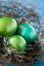 Easter colorful eggs in nest on blue background Stock Photos