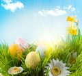 Easter. Colorful eggs in spring grass