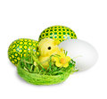 Easter composition chick in the nest and eggs Royalty Free Stock Photos