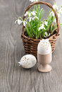 Easter composition with eggs and spring flowers Stock Images