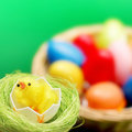 Easter concept Stock Images