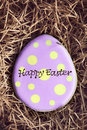 Easter cookie Royalty Free Stock Photos