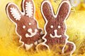 Easter cookies close up of gingerbread in bowl Royalty Free Stock Photography