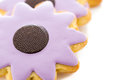 Easter cookies sugar in shape of flower with chocolate icing Stock Photos
