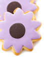 Easter cookies sugar in shape of flower with chocolate icing Stock Image