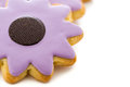 Easter cookies sugar in shape of flower with chocolate icing Royalty Free Stock Images