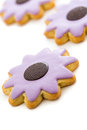 Easter cookies sugar in shape of flower with chocolate icing Stock Photo