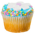 Easter cupcake with blue frosting and a flower isolated Royalty Free Stock Photo