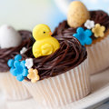 Easter cupcakes Royalty Free Stock Photo