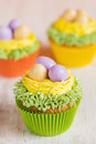 Easter Cupcakes Decorated With...