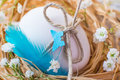 Easter decorated egg in nest natural light rustic table table decoration Stock Photos